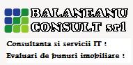 Balaneanu Consult